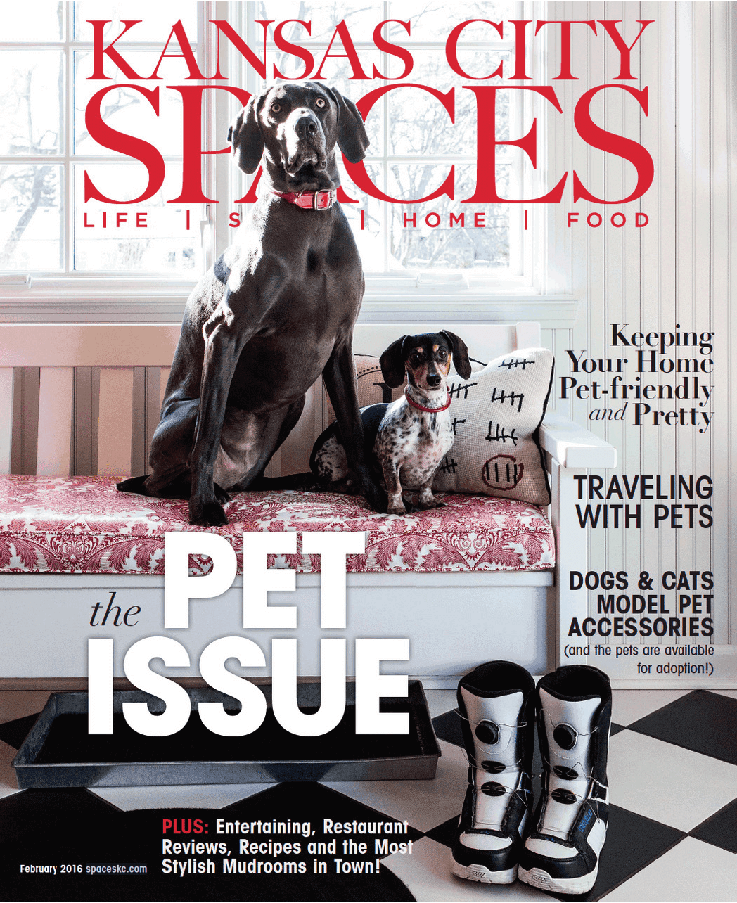 Kansas City Spaces February 2016 Issue Cover