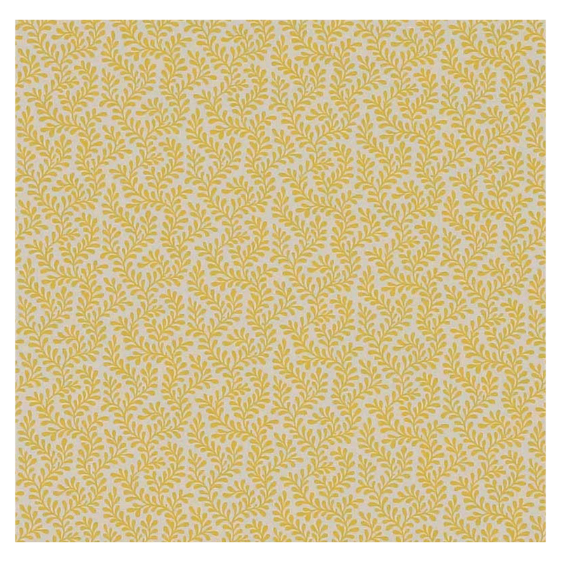 Blythe in Yellow | Fabric by Colefax and Fowler