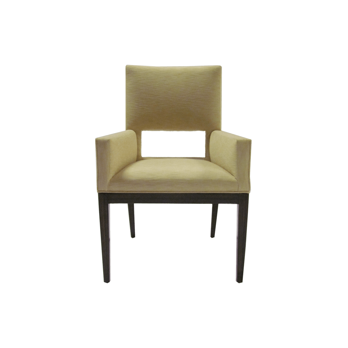 Artistic_Frame_Contemporary_Space_Chair